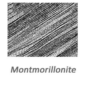 مونت موریلونیت