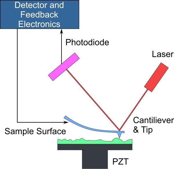 مبانی میکروسکوپ نیروی اتمی(AFM)