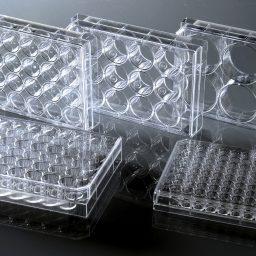 پلیت کشت سلول