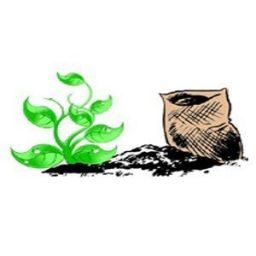 کاربرد اسید سولفوریک در کشاورزی (باغ پسته)