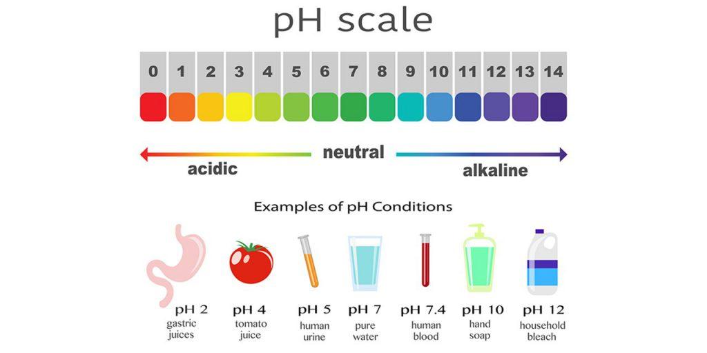 بافرها و نقش آنها در تنظیم pH