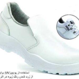 کفش بیس سفید بی بند (آزمایشگاهی)
